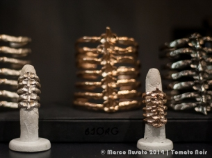 Bjorg (NO) backbone rings and bracelets